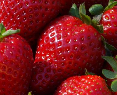 strawberry_currant_recipe